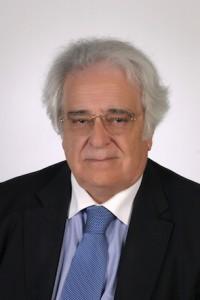 M. J. Lemos de Sousa